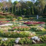 Mae Fah Luang Garden 2